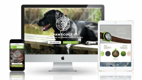 Sprout studios, Boston, industrial design, product design, start up, Pawscout, digital pet tag, pet tracker, branding, logo design, packaging design, app design, Ux/ui design, website design, 3D printing