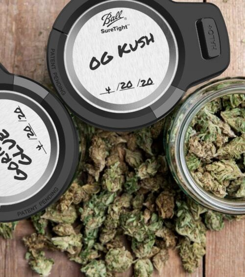 top down photo of three mason jars with cannabis and Halo+ Smart Lock