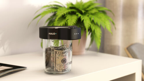Halo+ Smart lock with money inside