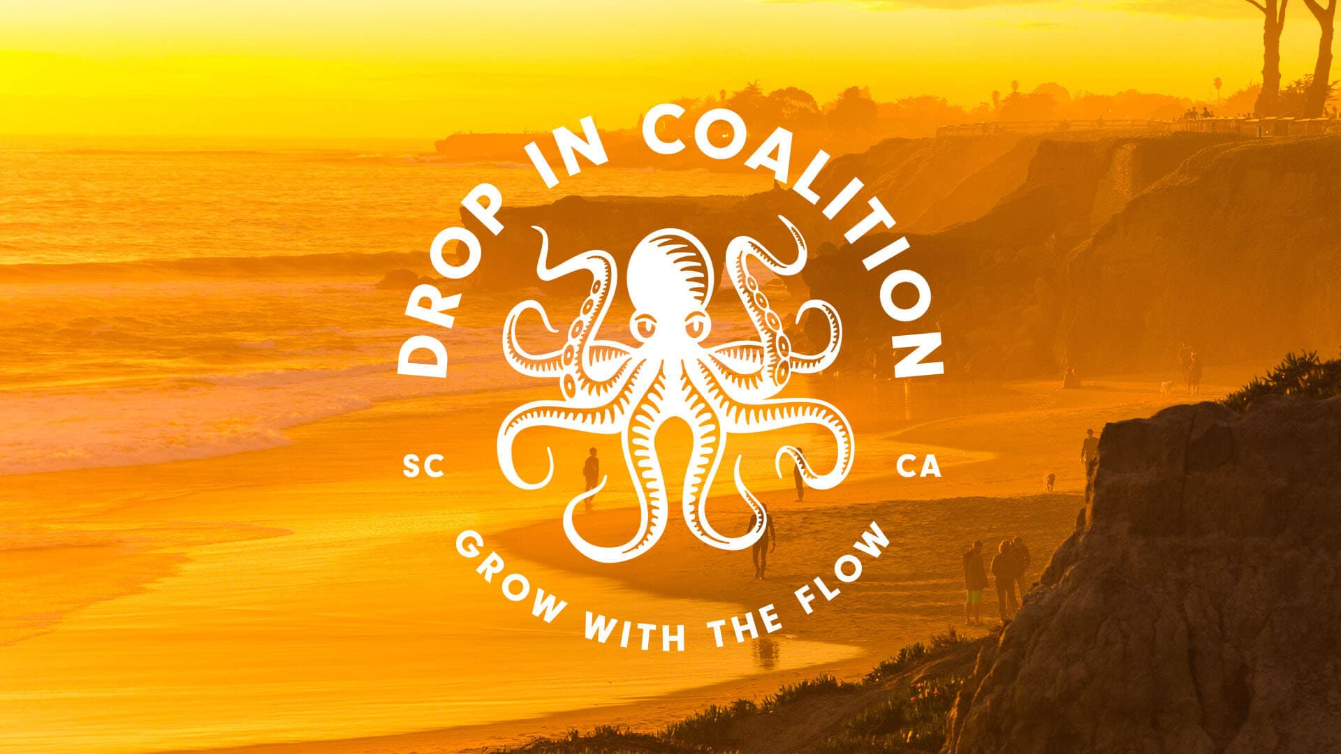 Drop in Coalition Logo on a sunset beach